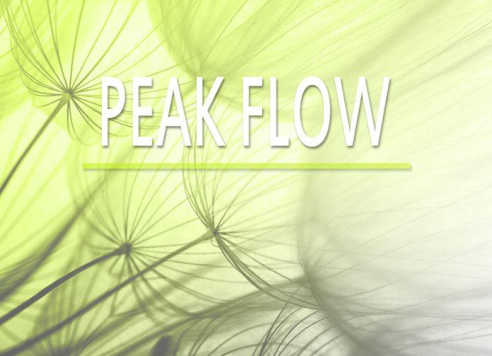 Medizintechnik-PeakFlowMeter